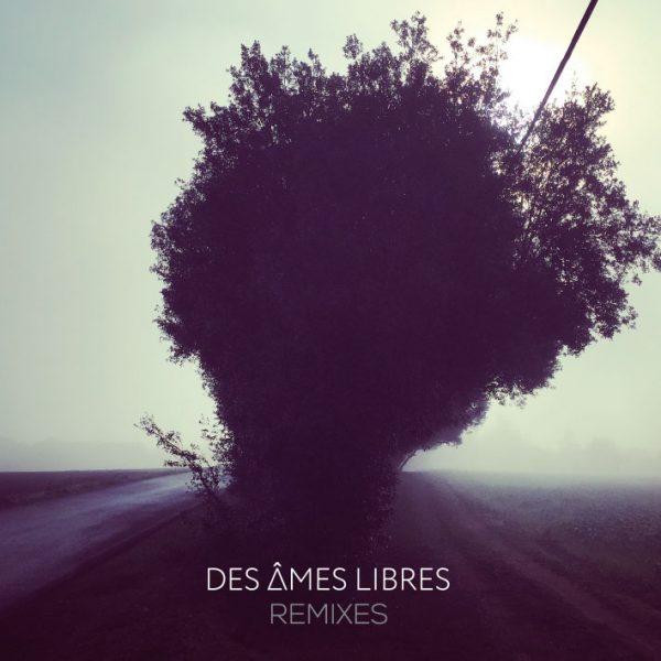 Des Âmes Libres Remixes