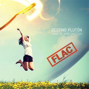Destino Plutón | Tarde de Amor Sintético (NORDFLAC-50004)